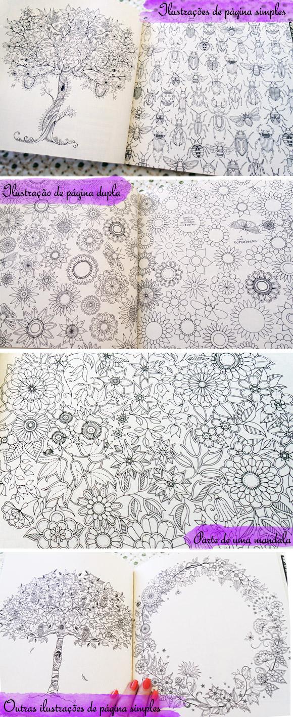 ideias para pintar livro jardim secreto : ideias para pintar livro jardim secreto:Para pintar existem muitas técnicas e utensílios que deixam seu