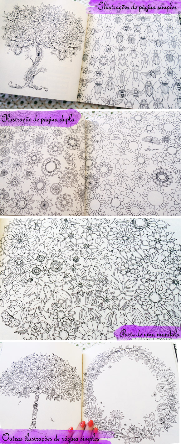 ideias para pintar livro jardim secretoPara pintar existem muitas