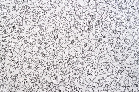 ideias para pintar o jardim secretoLivro Jardim Secreto • Elfinha